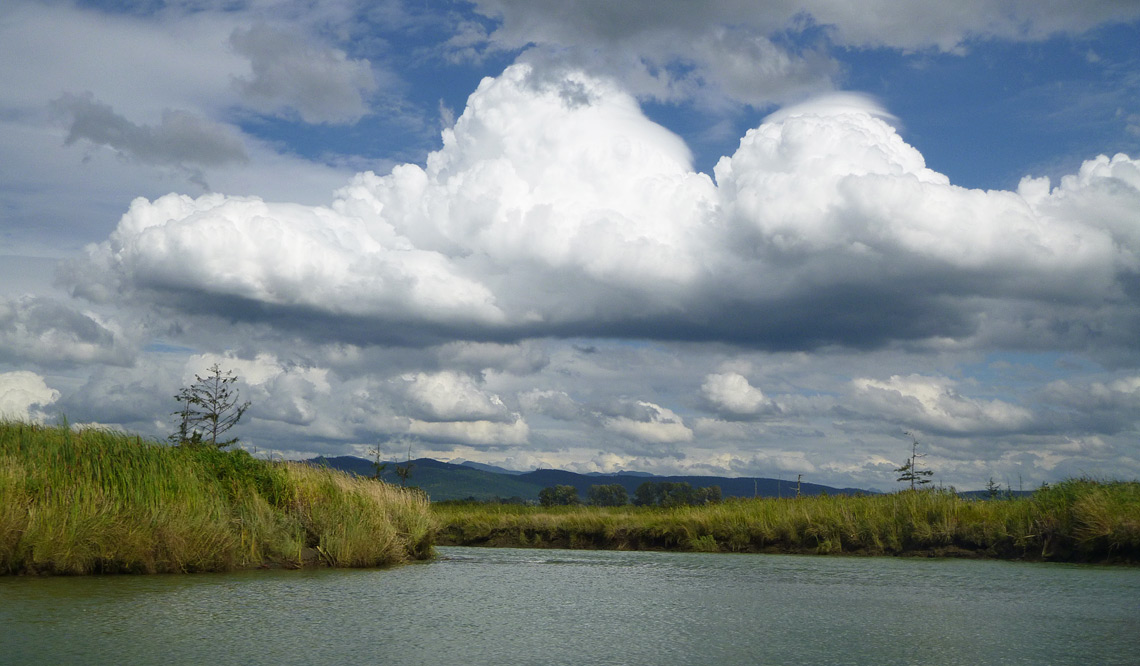 The Deepwater Slough Restoration Project is located in the South Fork Skagit River delta.