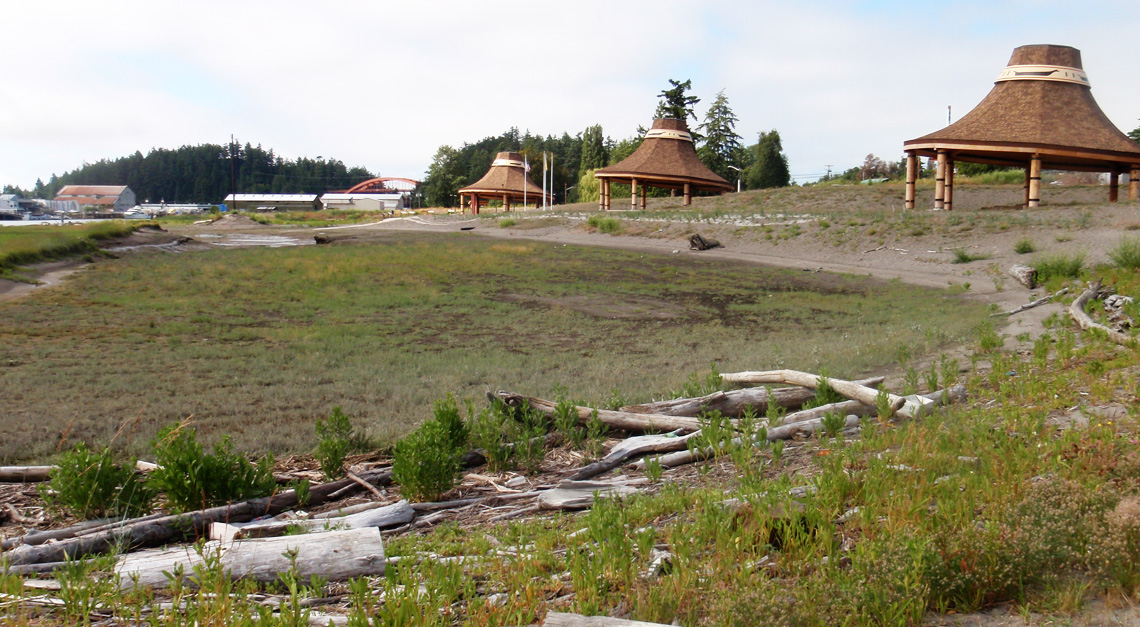 Swadabs Park,  along the waterfront of the Swinomish Village, two years after fill removal and marsh restoration.