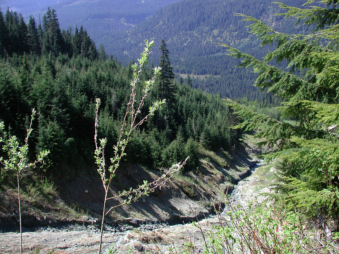 A landslide caused by improper mountain road drainage.