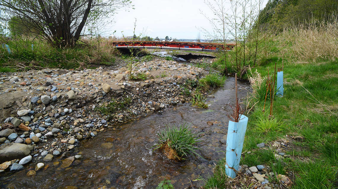 Railcar bridge and native plantings installed along the rerouted section of Johnson Creek.