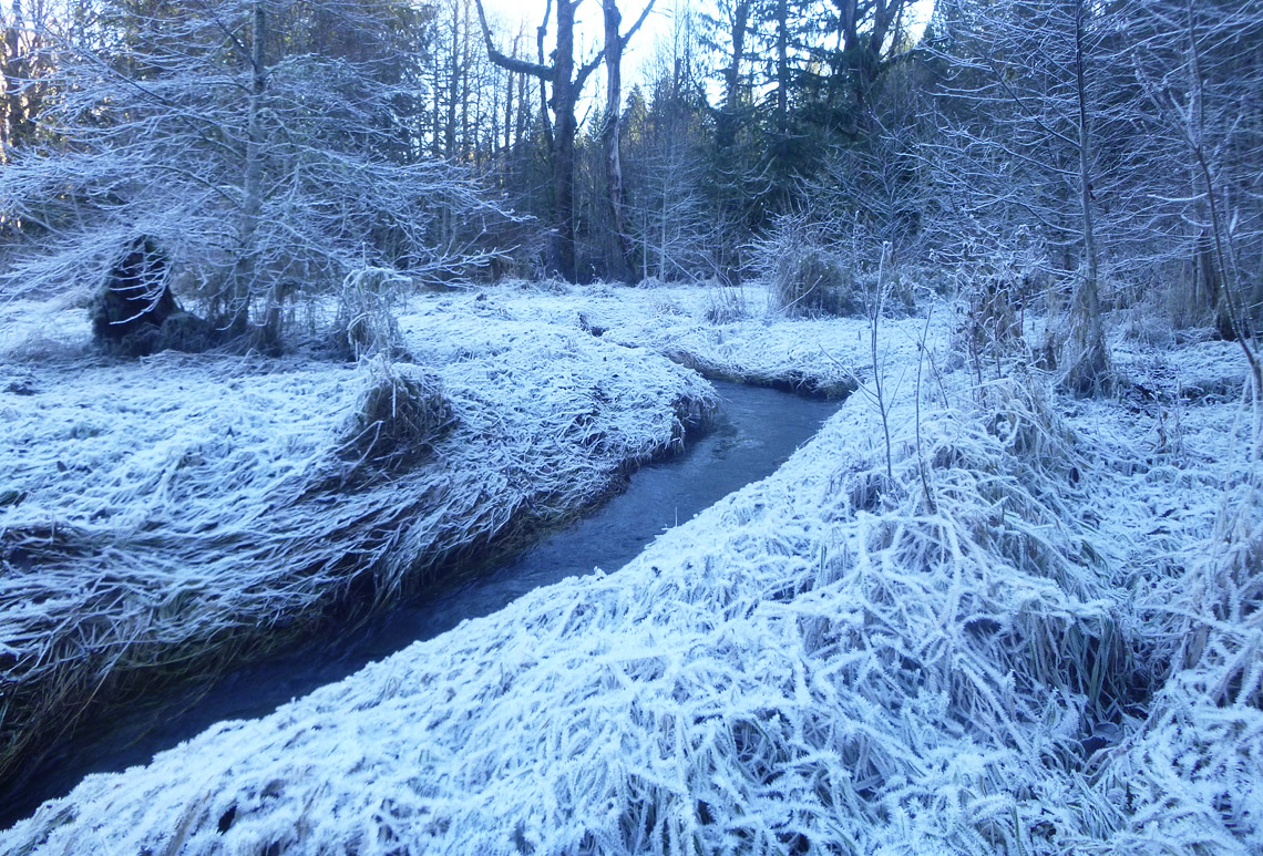 A winter view of Mill Creek