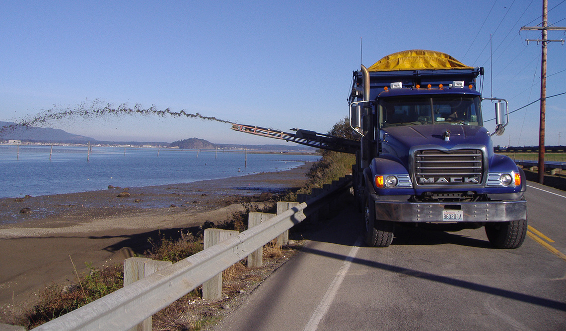 Conveyor trucks were used to deliver sediments to beach faces along West March's Point Road.