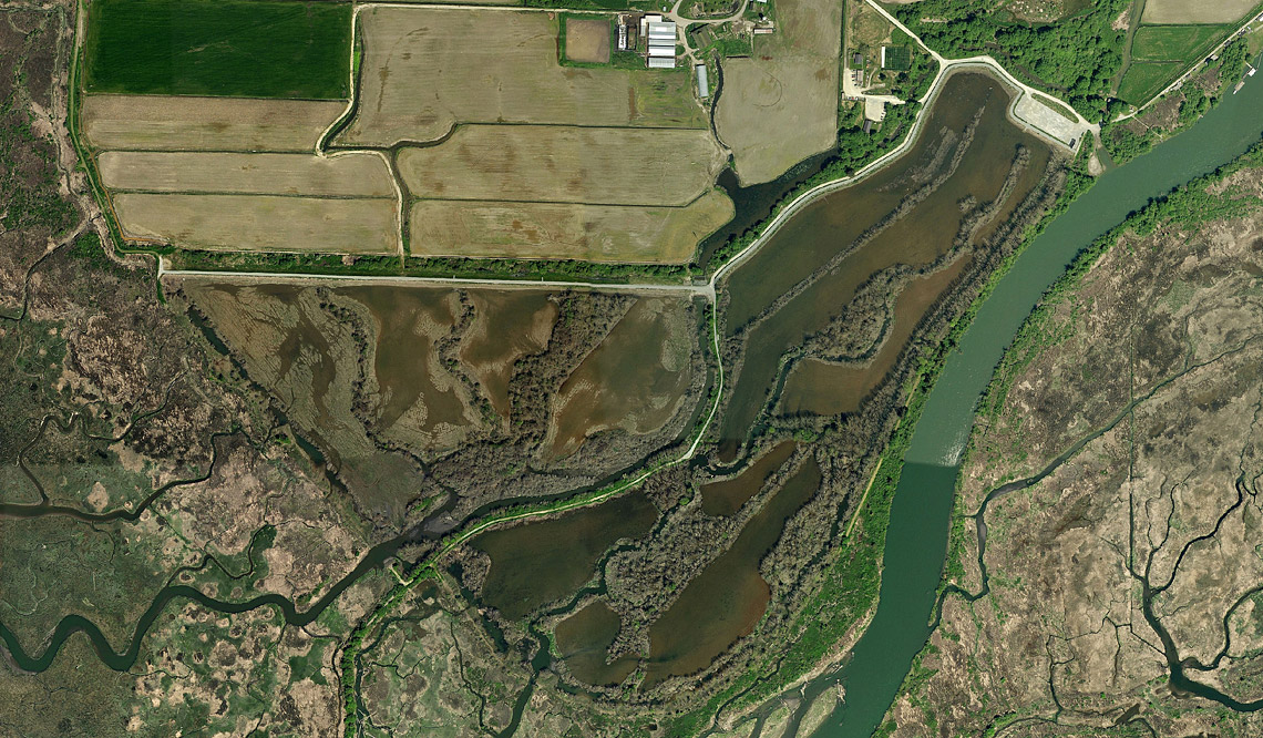 2011 aerial view of the Wiley Slough Restoration Project.  Photo: Pictometry.